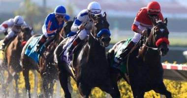 Pacific Classic odds